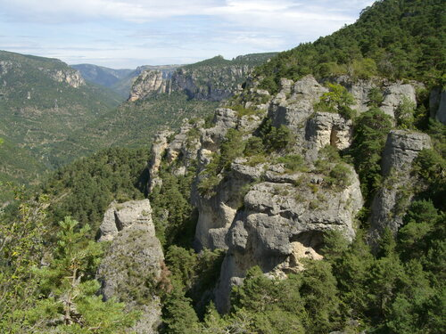 roches-gorges-tarn